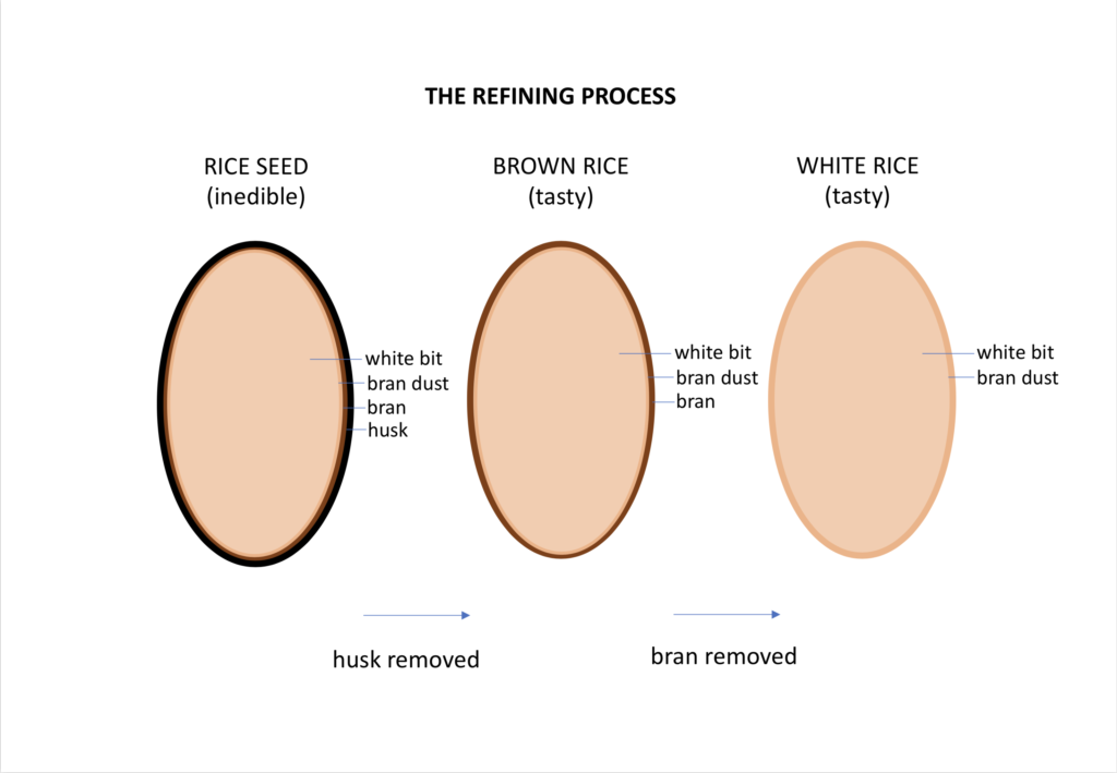 brown versus white rice